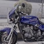 toptyp299