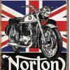 mr.norton